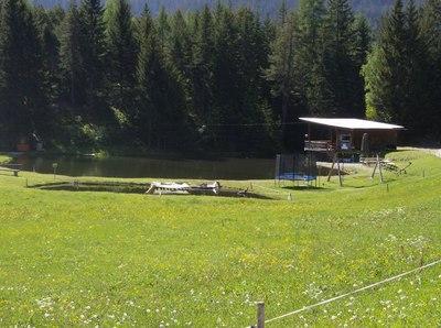 Jausenstation Fischteich Piller  1 400 m