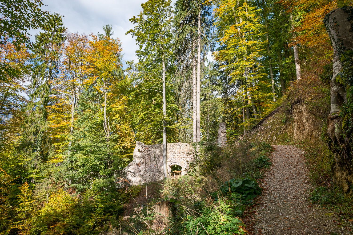 WEDNESDAY: Waterfall Buch, 200 year old spruce and ruin Rottenburg (Familyday)