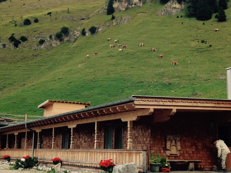 Binsalm Alp