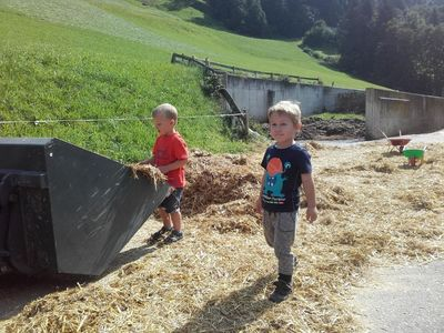 Children at the farm