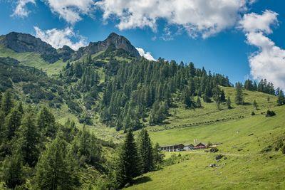 Weissenbachalm Alpine Cabin 1