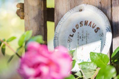 Ferienwohnung Looshaus 6
