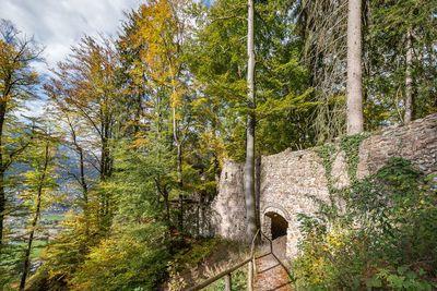 Ruine Rottenberg
