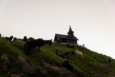 Kellerjoch Gipfelkapelle 5
