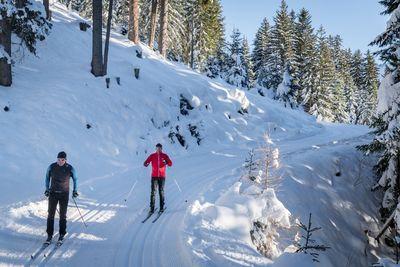 Cross-country skiing at Pillberg