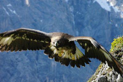 Wanderung ins Vomper Loch - Der Tiroler Grand Canyon 1