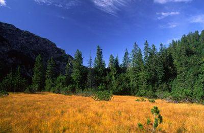 Nature Park Karwendel 4