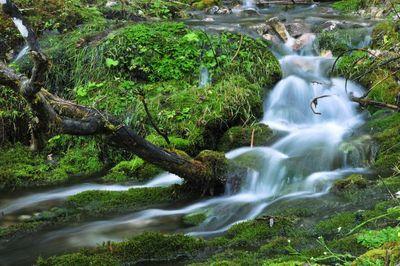 Nature Park Karwendel 6