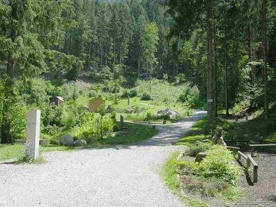 Schwazer Silberwald 4