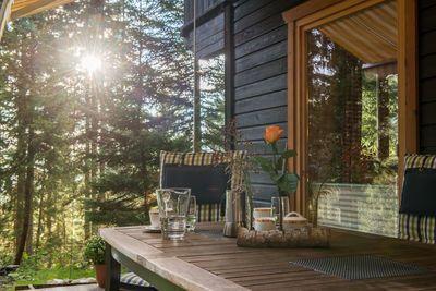 Waldhütte 3