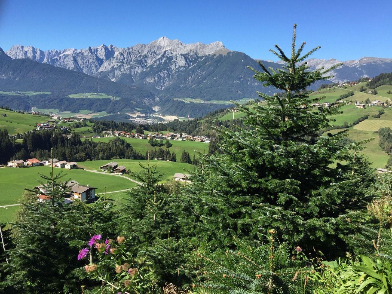 Christbäume vom Tunelhof – A echtes Stück Tirol