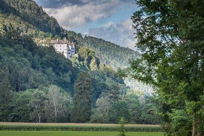 Familienfreundliche Tour von Stans nach Jenbach 1
