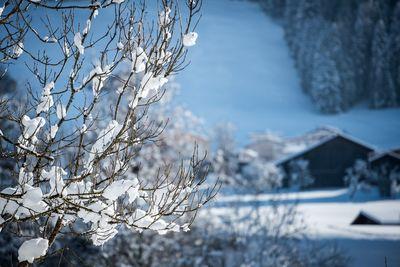 Winterwanderweg Weerberg 1