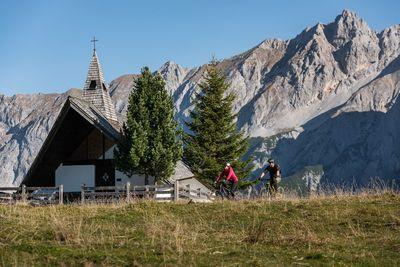 Walderalm Alpine Pasture 2