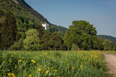 Von Stans zum Schloss Tratzberg 2