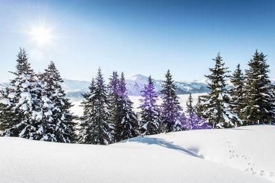 Skitouren Basic Camp 7