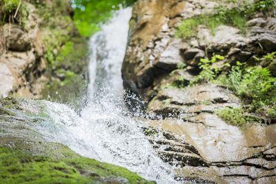 MONTAG: Bucher Wasserfall, 200 jährige Fichte und Burgruine Rottenburg (Familientag) 1