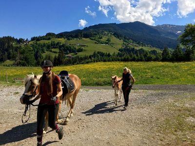 Pferd mit Pony am Vitalhof Tunelhof